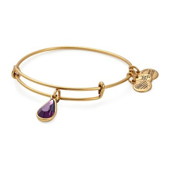 Feb birthstone adjustable bangle