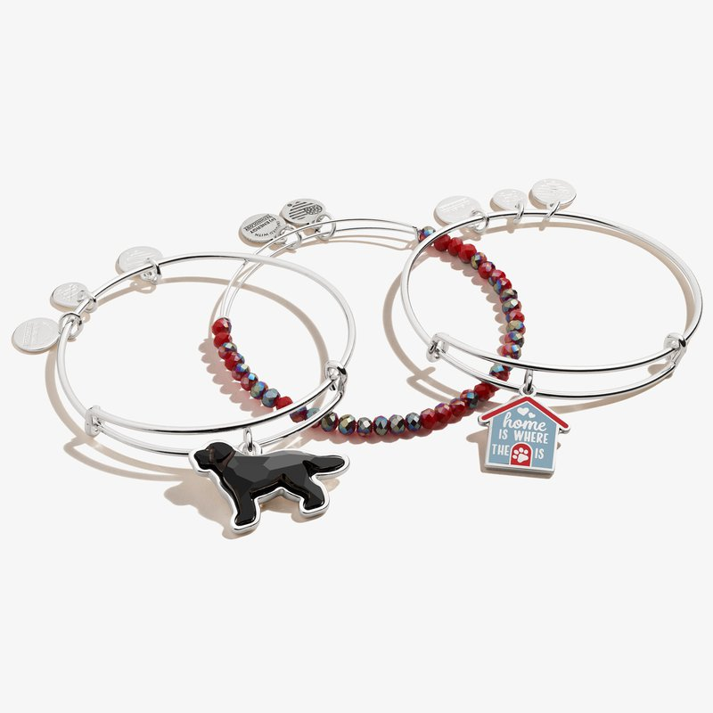 Alex and Ani Home is Where the Paw is' Doghouse Charm Bangles, Set of 3
