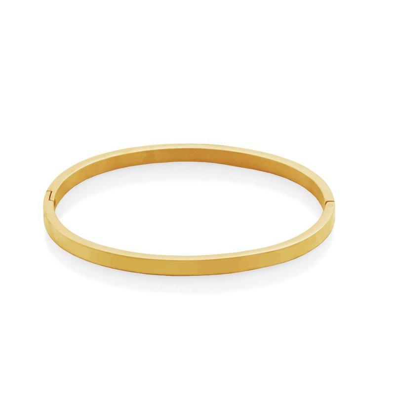 STEELX Gold Tone Hinge Bangle
