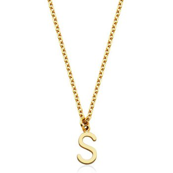 """""""S"""" Necklace"""