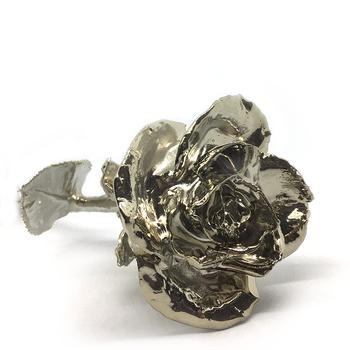 Platinum Bud Rose