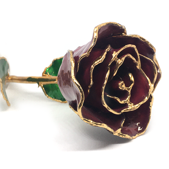 January Birthmonth Rose Trimmed in 24K Gold
