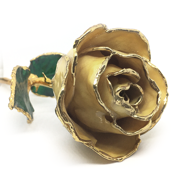 June Birthmonth Lacquer Rose Trimmed in 24K Gold