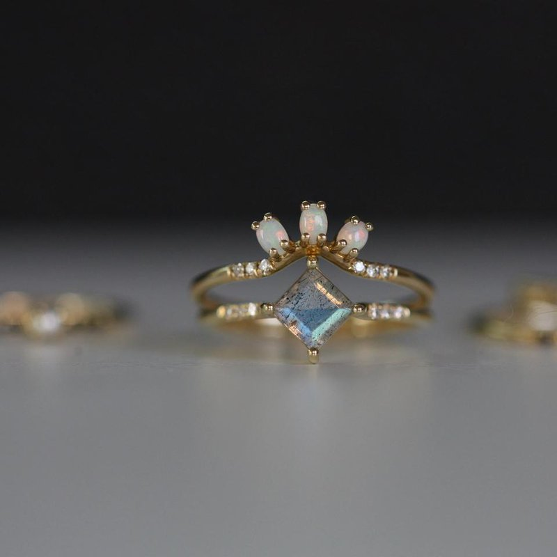 Jennie Kwon Lab Point Equilibrium Ring