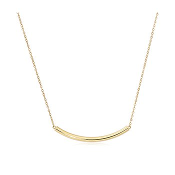 Curved Tube Gold Necklace