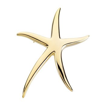 Starfish Brooch pendant