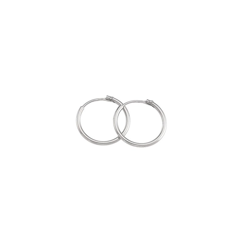 Ladies' Jewelry Hoop Earrings
