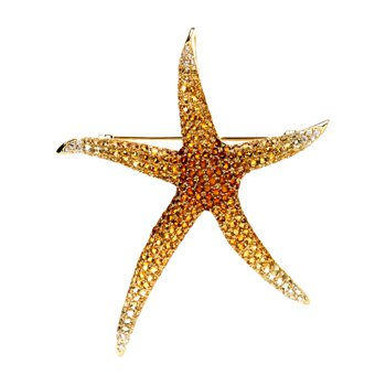Genuine Multi Gem-stone & Diamond Starfish Brooch Pendant