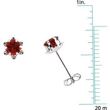 Teen January Birthstone Earrings