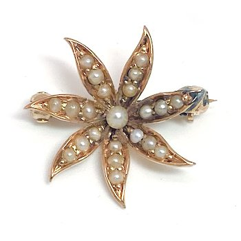 Lady's Victorian design seed pearl and yellow gold star brooch