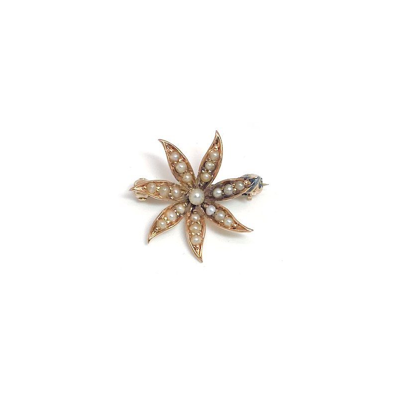 Estate & Vintage Lady's Victorian design seed pearl and yellow gold star brooch