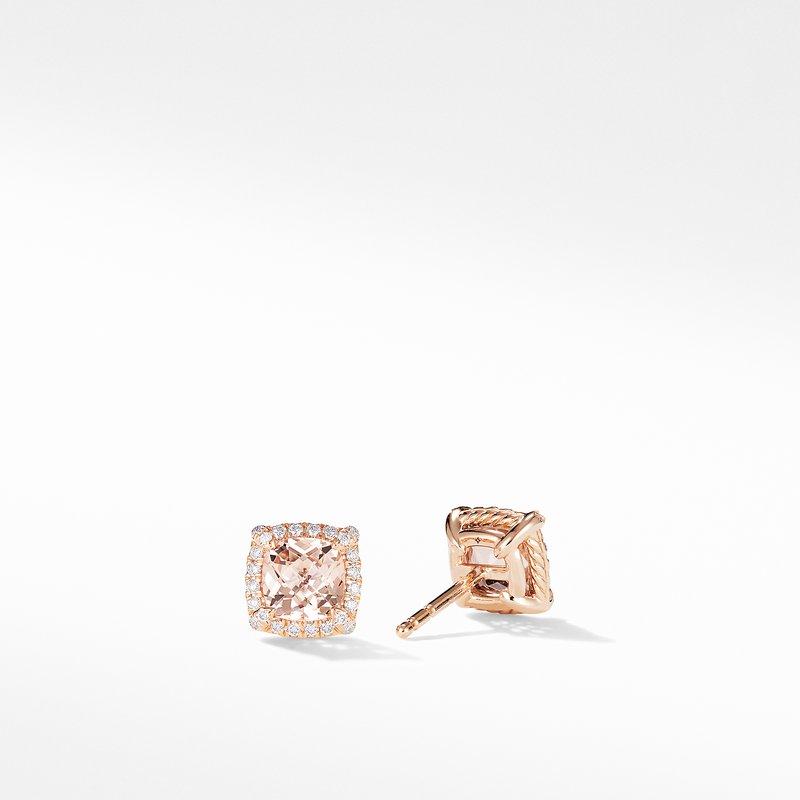 David Yurman Petite Chatelaine® Pavé Bezel Stud Earrings in 18K Rose Gold with Morganite