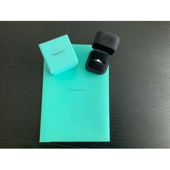 Tiffany Princess Cut GRACE .63 ct E VVS1 $8k NEW