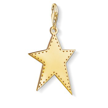 Charm Pendant Golden Star