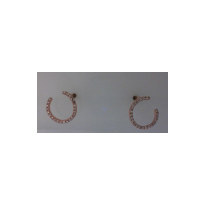 RNB Bijoux Jewellery Diamond Circle Earrings