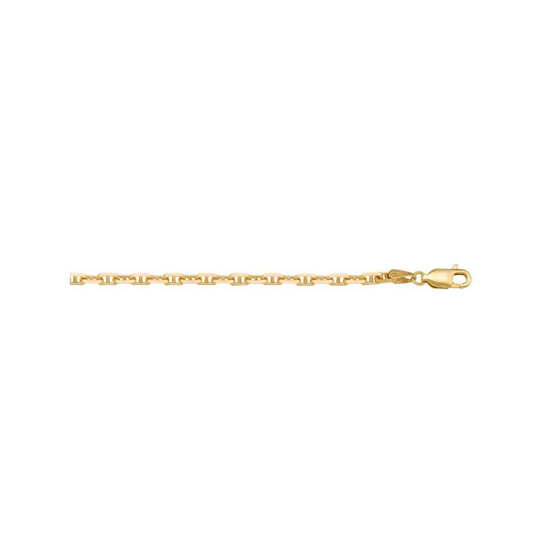 The Collection Gold Solid Anchor Link Chain