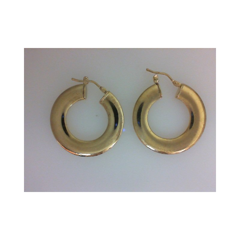 The  Collection Hoop Earrings