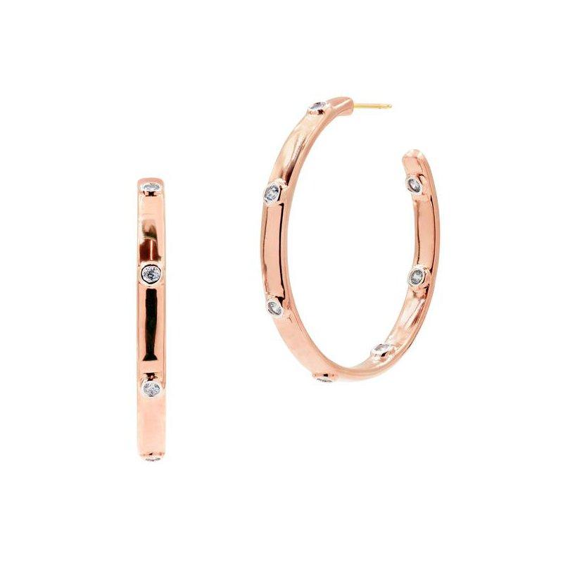 Freida Rothman Radiance Chunk C-Hoop Earrings