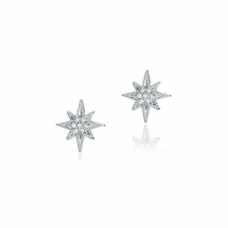 Liven Co. Medium Starburst Post Earrings