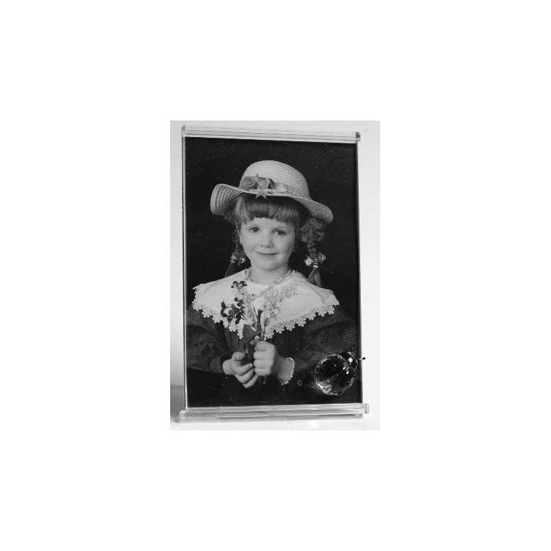 Swarovski Ladybug Picture Frame