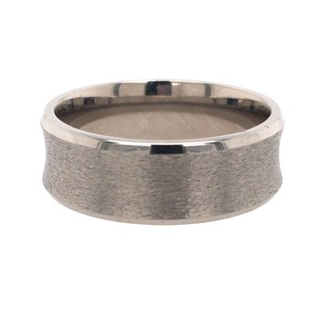 Titanium Stone Finish Band
