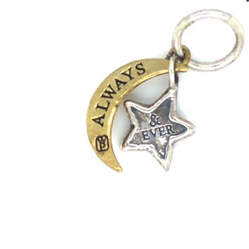 Brass & Sterling Silver Always & Ever Charm Couplet