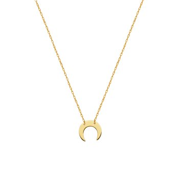 Lady's 14kt Yellow Gold Crescent Moon Necklace