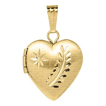 Children's 14kt Gold Filled Heart Locket/Chain