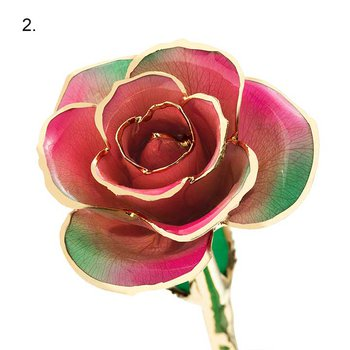 24K Gold Dipped Real Roses (13 Color Options)