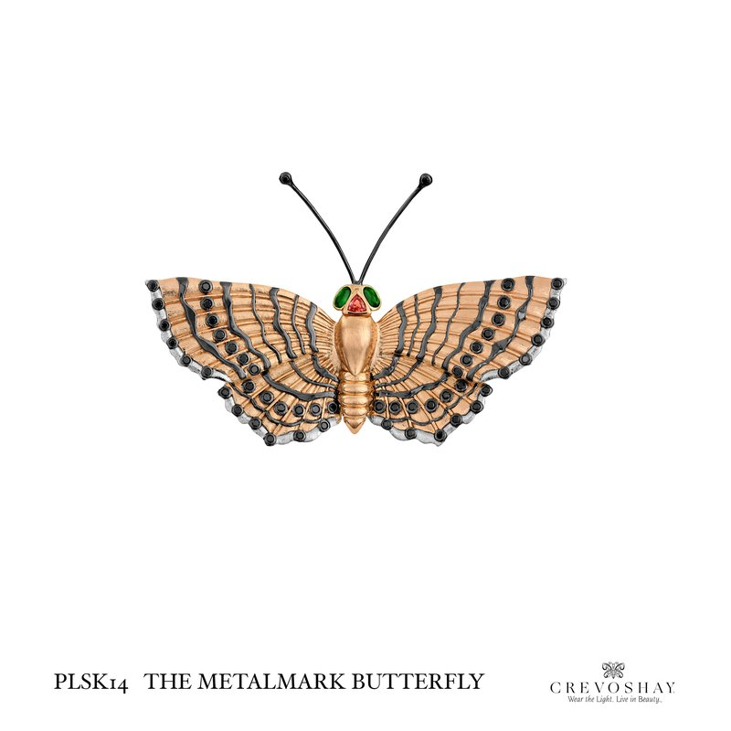 Paula Crevoshay  The Metalmark Butterfly