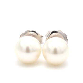 White South Sea Pearl Stud Earrings