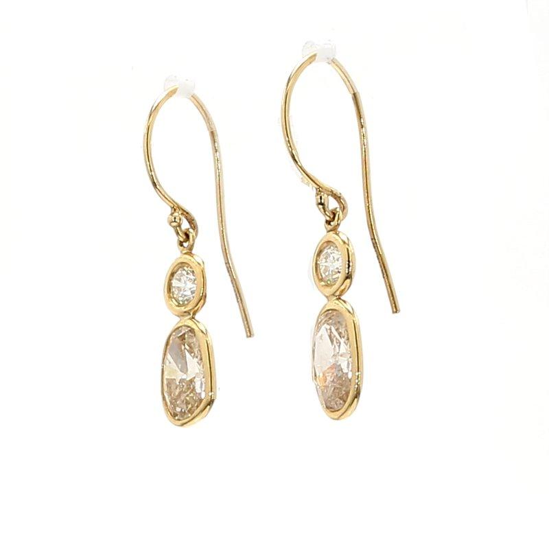 Spicer Greene Fancy Color Diamond Drop Earrings