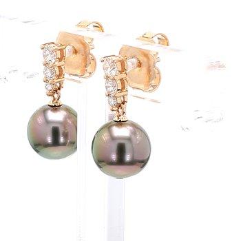 Black South Sea Pearl Dangle Earrings