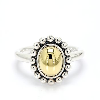 Silver and Gold Dome Ring