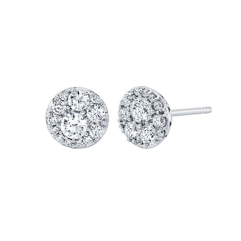 Greenberg's 10k white gold journey-style circle earrings
