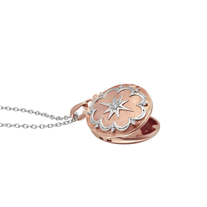Greenberg's love star sterling silver with pink micron plated locket