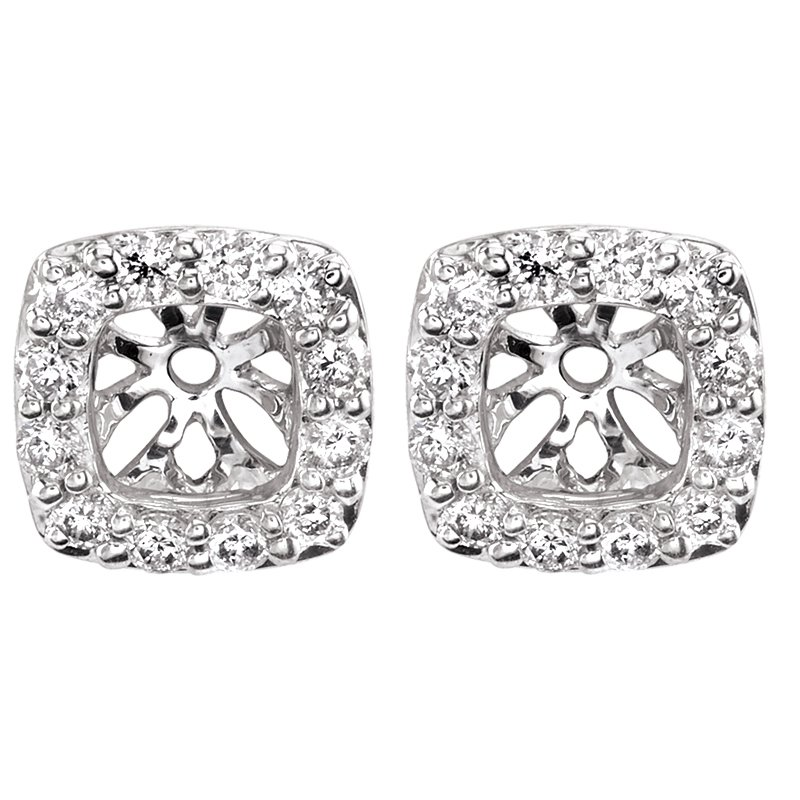 Greenberg's 14k white gold 1/4ctw square earring jackets