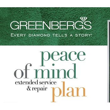 Peace of Mind Plan ($201-$400)