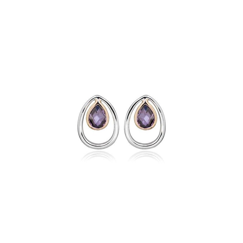 Larus Amethyst Stud Earrings