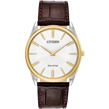 Eco-Drive Watch Brown Leather