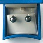 HJ Pearl Collection 14KW Tahitian Pearl Stud Earrings (11mm)