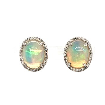 Shimmering Opals surround by a delicate circle of diamonds in white gold