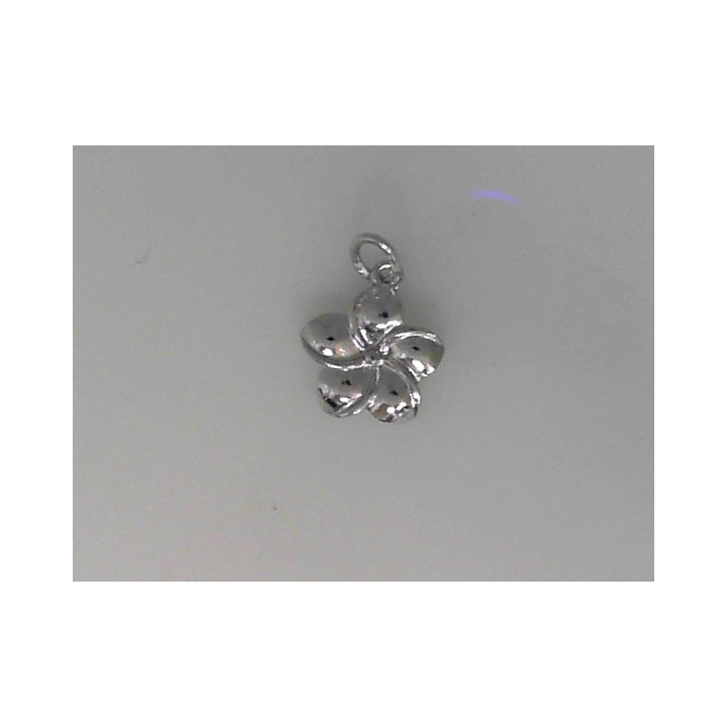Rembrant Charms 490-02371