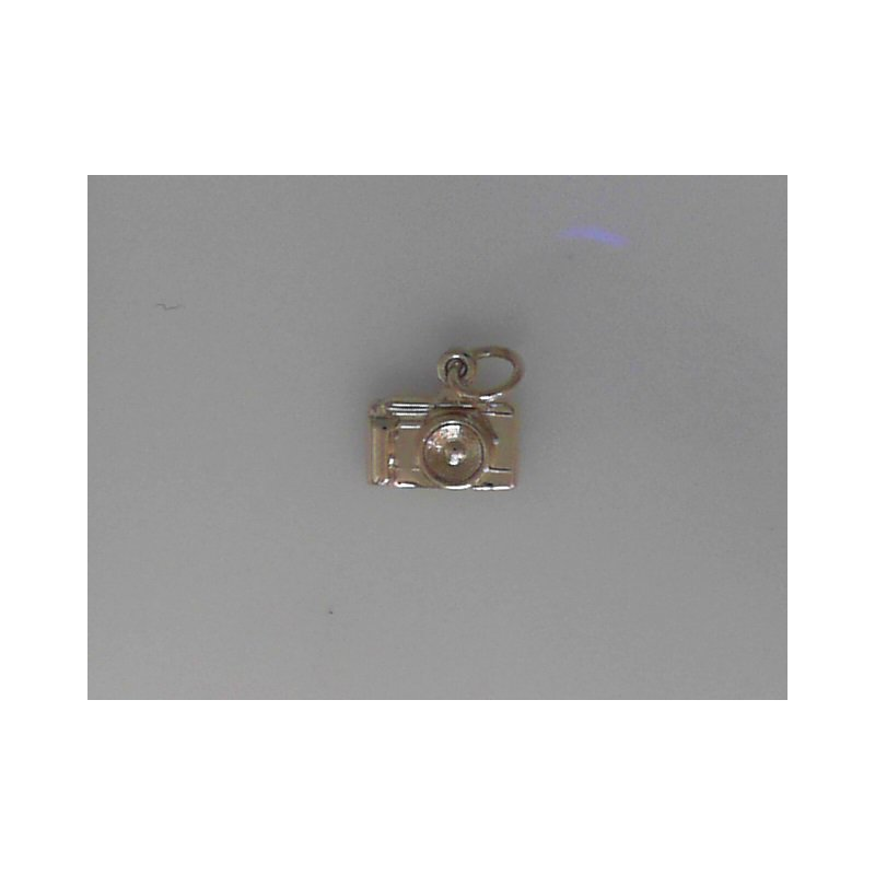 Rembrant Charms 490-02375