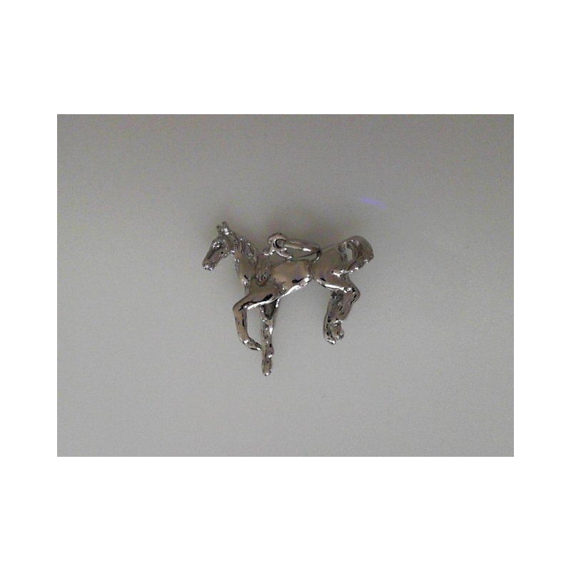 Rembrant Charms 490-02362