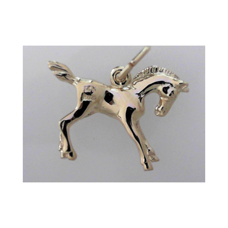 Rembrant Charms 490-02253