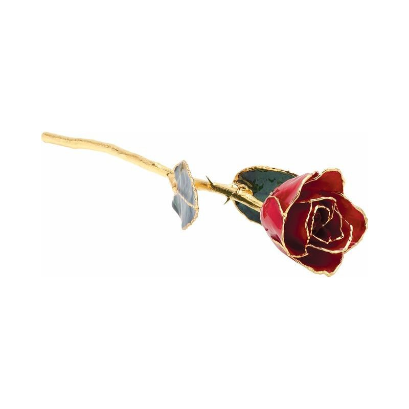 Calvin Broyles Classic Red Gold Dipped Rose