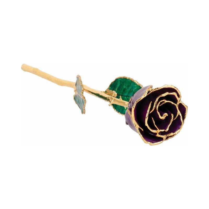 Calvin Broyles Purple Gold Dipped Rose