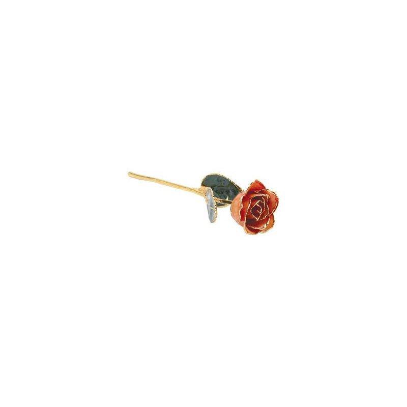 Calvin Broyles Orange Gold Dipped Rose
