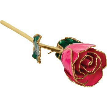 Magenta Gold Dipped Rose
